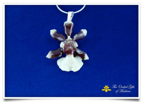 7 Orchid jewellery pendant