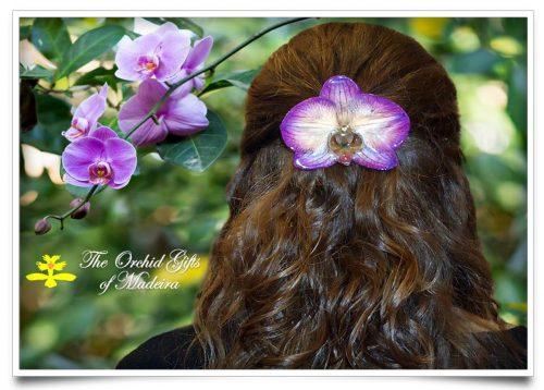 Hairclip/Pendant